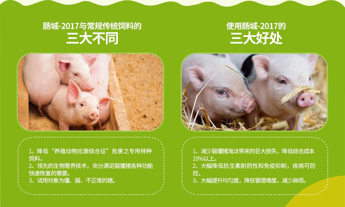 与常规饲料的不同和优势