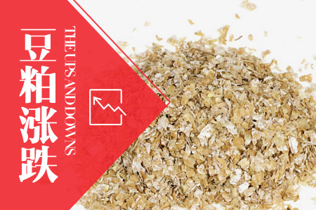 2020年07月08日全国豆粕价格行情走势汇总