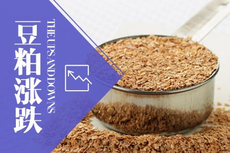 2020年01月22日全国豆粕价格行情走势汇总