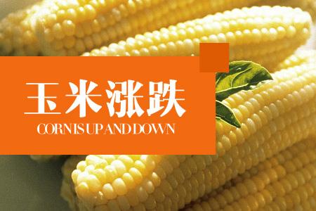 2019年05月23日全国玉米价格行情走势汇总
