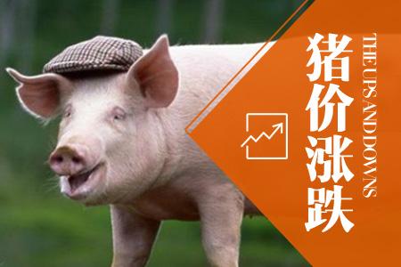 2021年04月13日全国内三元生猪价格行情涨跌表