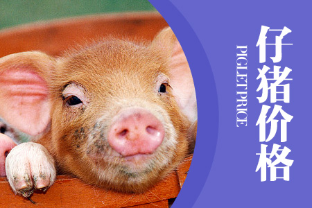 2020年10月25日(10至14公斤)仔猪价格行情走势