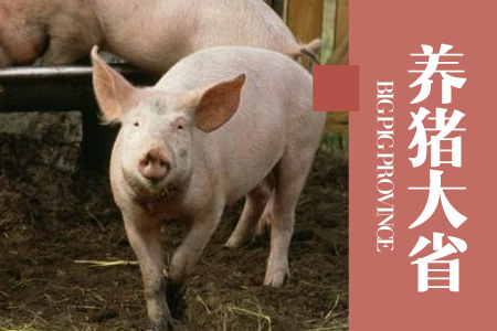 2020年06月01日云南省外三元生猪价格行情涨跌表