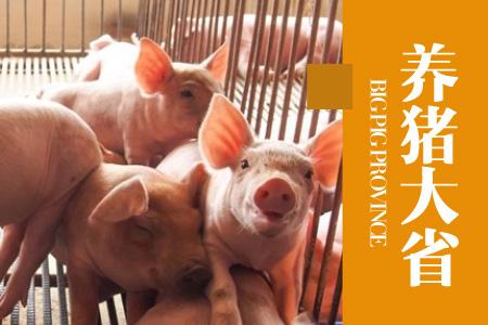 2020年06月01日广西省外三元生猪价格行情涨跌表