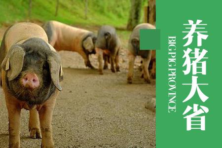 2021年01月24日云南省内三元生猪价格行情涨跌表