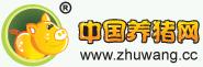 yzc888亚洲城