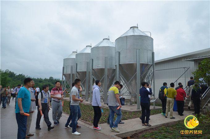 参观重庆天兆荣昌双河核心种猪场