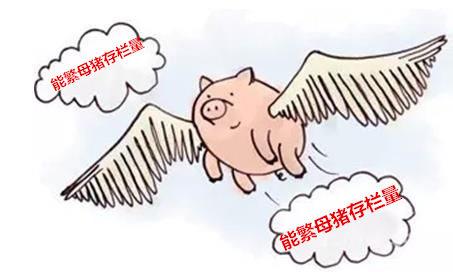 能繁母猪存栏量下降 猪价上涨的洪荒之力