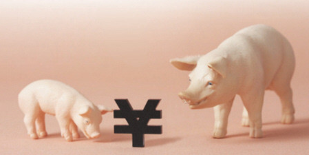"""一周综述:九月将至 利好""""聚会"""" 猪价将适度走强"""