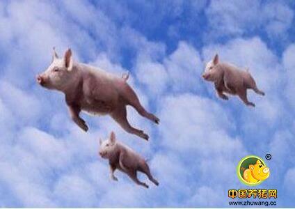 震惊!牧原股份再出资11.5 亿元投资生猪产业化项目