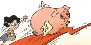 一周综述:猪价利好增加 进入9月反弹迹象明显