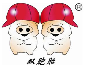 名企推荐——双胞胎(集团)股份有限公司