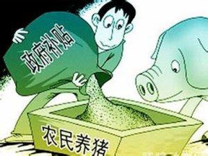 农业补贴:猪场改扩建最高可拿100万元补贴!