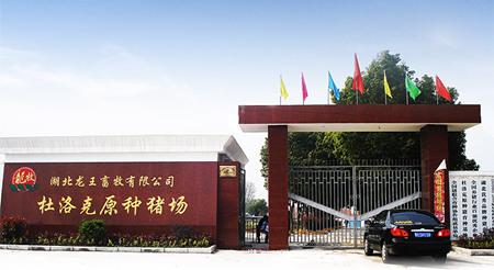 名企推荐——湖北龙王畜牧有限公司