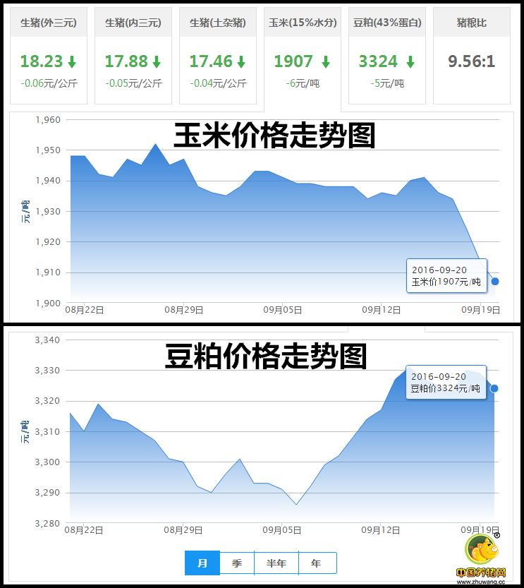 9月19日猪评:猪周期受影响 未来猪价或逐渐稳定