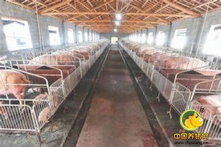 猪场吊顶方法步骤图