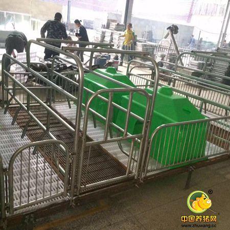 产床保育床定位栏