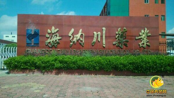 名企推荐——广东海纳川生物科技股份有限公司