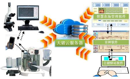 名企推荐——天猪科技(北京)有限公司