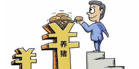 多省猪价维持稳定 短期国内猪价震荡调整