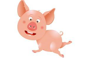 国庆期间锡城生猪供应充足 9月猪价环比下跌2.55%