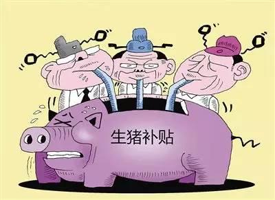 养猪补贴未落实还导致市场低迷?
