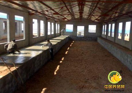 冬季猪舍建造注意细节