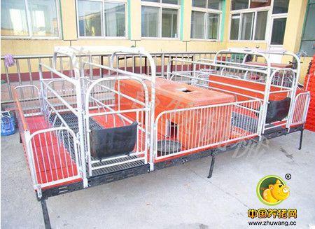 高床保育栏 为养猪场量身打造的养猪设备