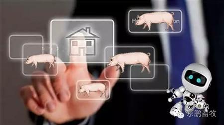 未来猪场哪些活可以丢给智能机器人去干?