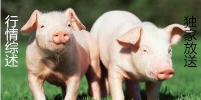 一周综述:猪周期被打破?后市行情将进入新常态