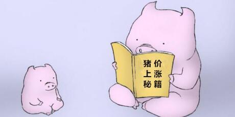 支撑春节前猪价上涨的几大因素,哪个对养猪场影响最大?