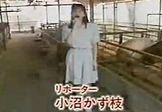 日本女主持养猪场内尴尬直播 公猪竟然......