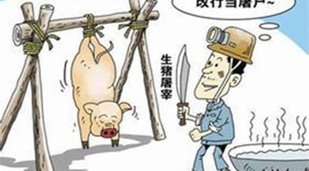 农业部:做好2017年元旦春节期间生猪屠宰监管工作