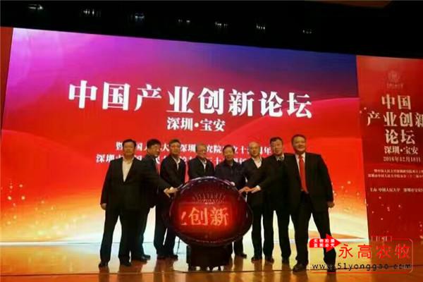 深圳首届中国产业创新论坛