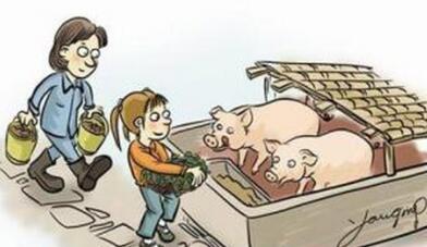 农村养猪补贴知晓率仅6.25%?补贴究竟如何惠及养猪人