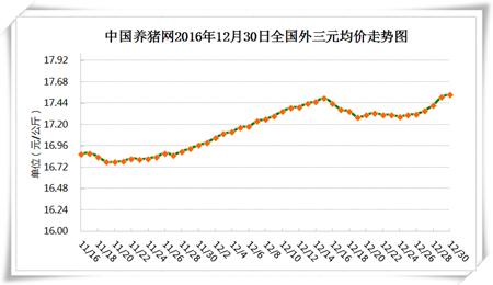 12月30日猪评:假期猪价稳定上涨 元旦后消费稍有减弱