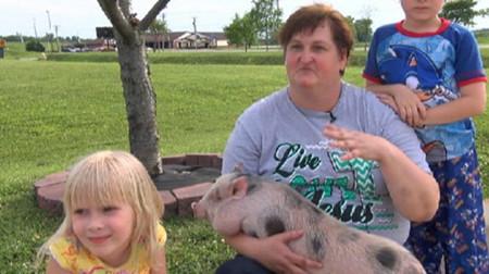 居民家养猪当宠物 夜间失火小猪叫醒主人救命