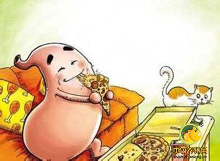 猪的内科病-胃肠卡他