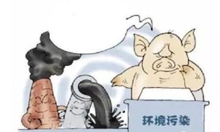 看来真的跑不掉了,养猪要交税!