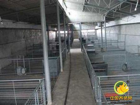 养猪技术 猪场建设 > 正文    由于单列开放式猪舍和双列封闭式猪舍图片