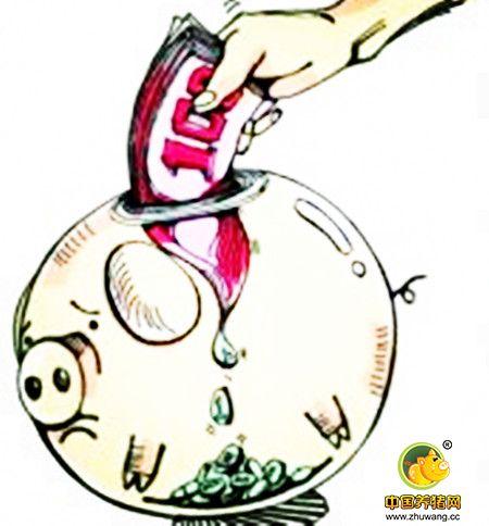 春节前毛猪价格逐渐进入到有价无量阶段,谨防被忽悠!