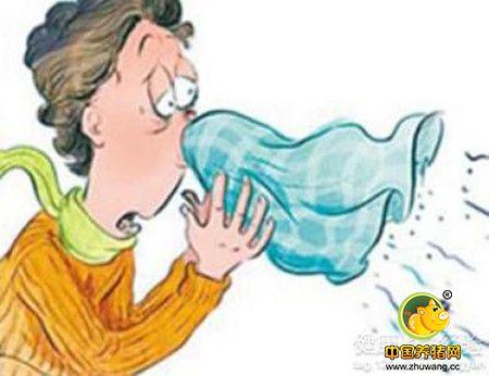 经验分享:猪呼吸道疾病:我是这样做的