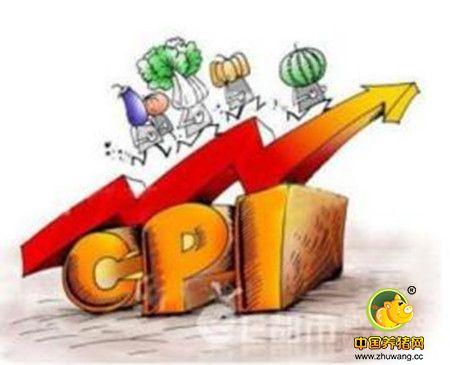 猪肉价推高CPI 成都去年同比涨2.2%