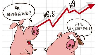 2017年猪价还能破10?这个分析太到位了