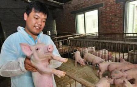 猪病用药的一般原则