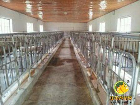 生猪标准化规模养殖场建设应注意的核心问题构架