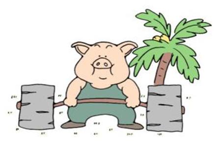 国内外养猪增重方法大PK