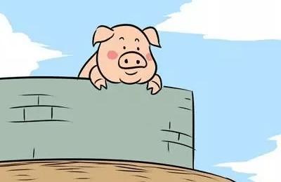 促进母猪发情四妙招!