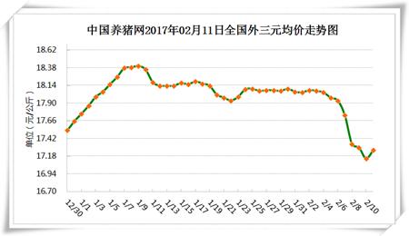 2月11日猪评:元宵利好猪价反弹! 这次上涨能延续吗?