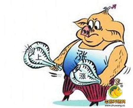端午节前后或将成为今年猪价第二个高点?